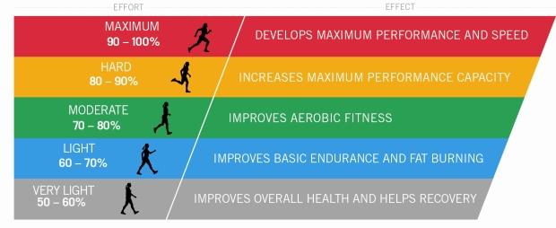 training_zone_diagram